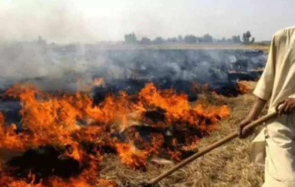 Haryana Farmers Scheme :हरियाणा में सरकार ने शुरू की नई योजना, किसानों को प्रति एकड़ मिलेंगे एक हजार रूपये, जानिये कैसे